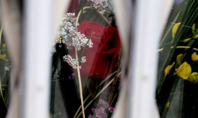 Una rosa a l'aparador d'una floristeria tancada durant la diada de Sant Jordi   ACN
