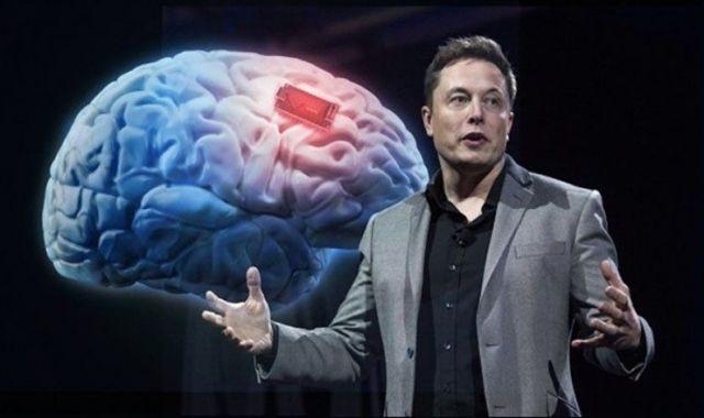 Musk pretén connectar electrònicament el cervell humà amb l'ordinador