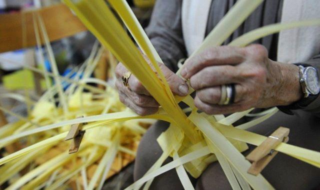 Trenar la palma és només una part del procés productiu