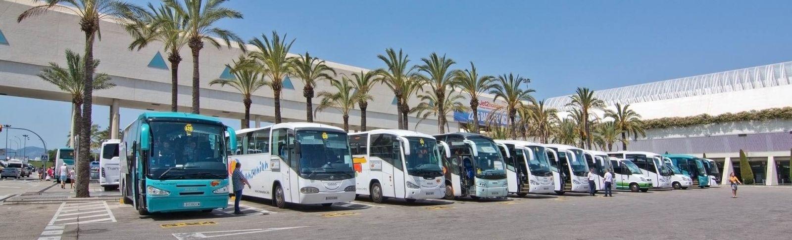 Autobusos que esperen per recollir turistes a l'aeroport