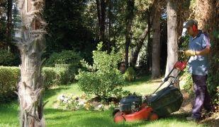 La jardineria és un dels sectors que ha donat feina als participants de la iniciativa