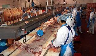 L'estudi constata que una de cada cinc empreses amb més facturació de Girona pertany al sector carni. X. Pi (ACN)