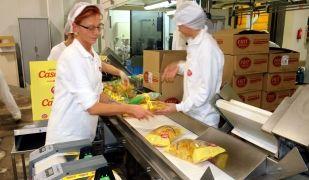 Treballadores envasant patates casolanes a la fàbrica de Frit Ravich a Maçanet de la Selva | ACN